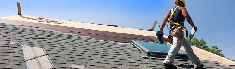 Professional roofers Naperville